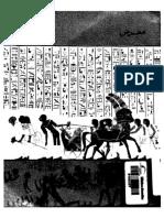 المقاتل المصري