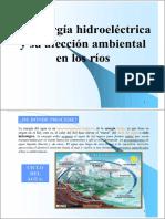 afeccion_hidroelectrica (1).pdf