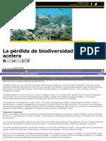 Se Pierde Biodiversidad Marina