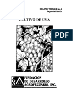 Cultivo de La Uva