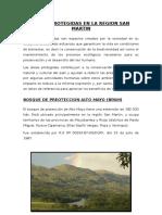 Areas Protegidas en La Region San Martin