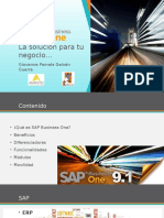 SAP_PPT FINAL pamela.pptx