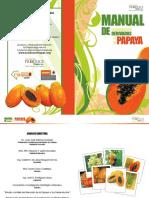 Derivados de La Papaya