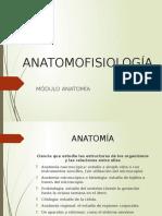 Anatomo Clase 1