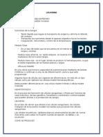 LEUCEMIA-RESUMEN-GRUPO-5 (1) (1)