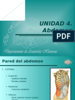 Clase 12 Anatomia pared abdomen.pptx