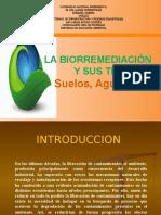 Biorremediación (Postgrado Unellez-jesús Rodríguez)