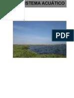 PRACTICA N°3 ecología