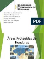 Tarea Areas Protegidas de Honduras