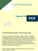 TheHumanBrain.pdf