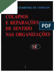 Colapsos e reparações de sentido nas organizações