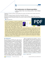 NANOENCAPSULATION.pdf