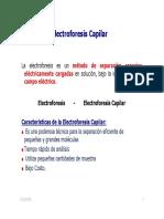 Electroforesis_Capilar_2011