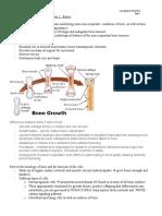 Bones tutorial, student outline.doc