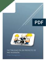 FACTIBILIDAD EN UN PROYECTO DE PRE INVERSION