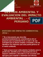 36381043 Diapositivas Estudio Impacto Ambiental Peru