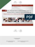 Perfil_funciones_DIRECCION_PROMOCION_EMS_2016.pdf