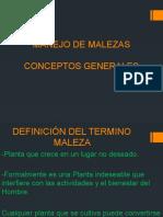 DEFINICIÓN DEL TERMINO MALEZA.pptx
