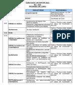 programa-BLS.pdf