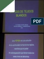 12 - Sintesis de Tejiodos Blandos