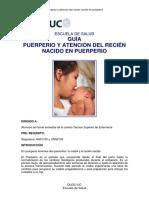 Guía Puerperio y Atencion Recien Nacido en Puerperio