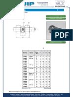 G-062008 (1).pdf