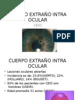 Cuerpo Extraño Intra Ocular Expo