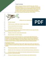21 Manfaat Temu Putih Untuk Kesehatan
