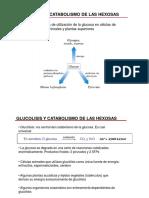 glucolisis-1218521457723115-9