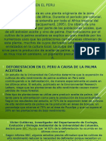 Deforestacion en El Peru-david