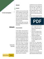 salinizacion.pdf