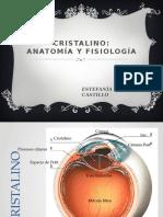 Anatomía Del Cristalno