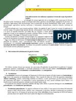 AAH Cap III Biotecnologie - Copia PerAlunniAggiornataDicembre