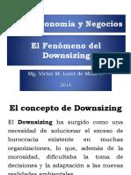 19_-Downsizing.pdf