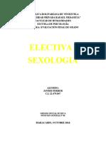 E.F.G. ELECTIVA I
