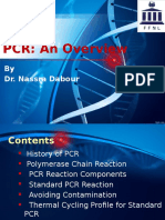 PCR an Overview