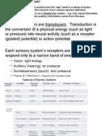 The Sensorimotor System