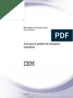Guía para la gestión de metadatos operativos DataStage