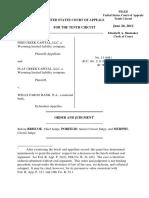 Fish Creek Capital, LLC v. Wells Fargo Bank, N.A., 10th Cir. (2012)
