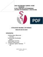 Informe de Citologia Vaginal en Perras