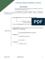 FUNGOS Agentes Causais de Infecções Fúngicas Superficiais e Cutâneas Zago