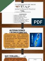 Biologia Alteraciones cromosomicas