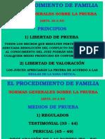 Procedimiento de Familia. Normas Sobre La Prueba.