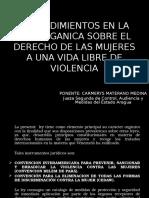 Ponencia Procedimiento Ley de Violencia