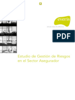 Everis - Gestion Riesgos en El Sector Asegurador - Peru