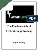 Vertical Jump Fundamentals