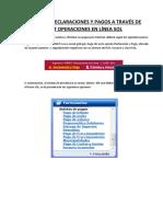 Manual de Declaraciones y Pagos