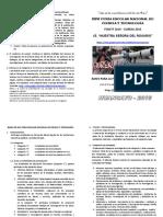 BASES de FENCYT 2016 NSR.pdf