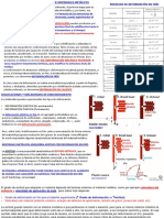 Tema3.TeoriaDislocaciones.MecanismosEndurecimiento
