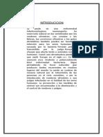 Peste Negra en El Peru Siglo 20